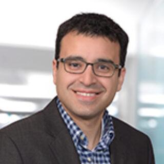 Saad Hassan